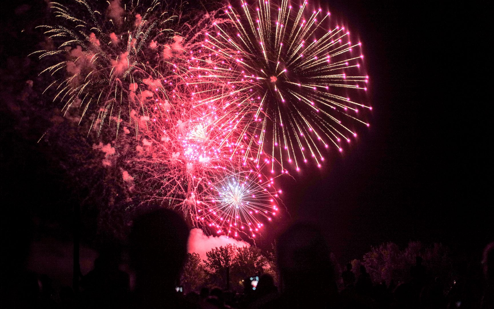 Canada Day Fireworks at Ashbridge's Bay, Photo by Shane Carslake