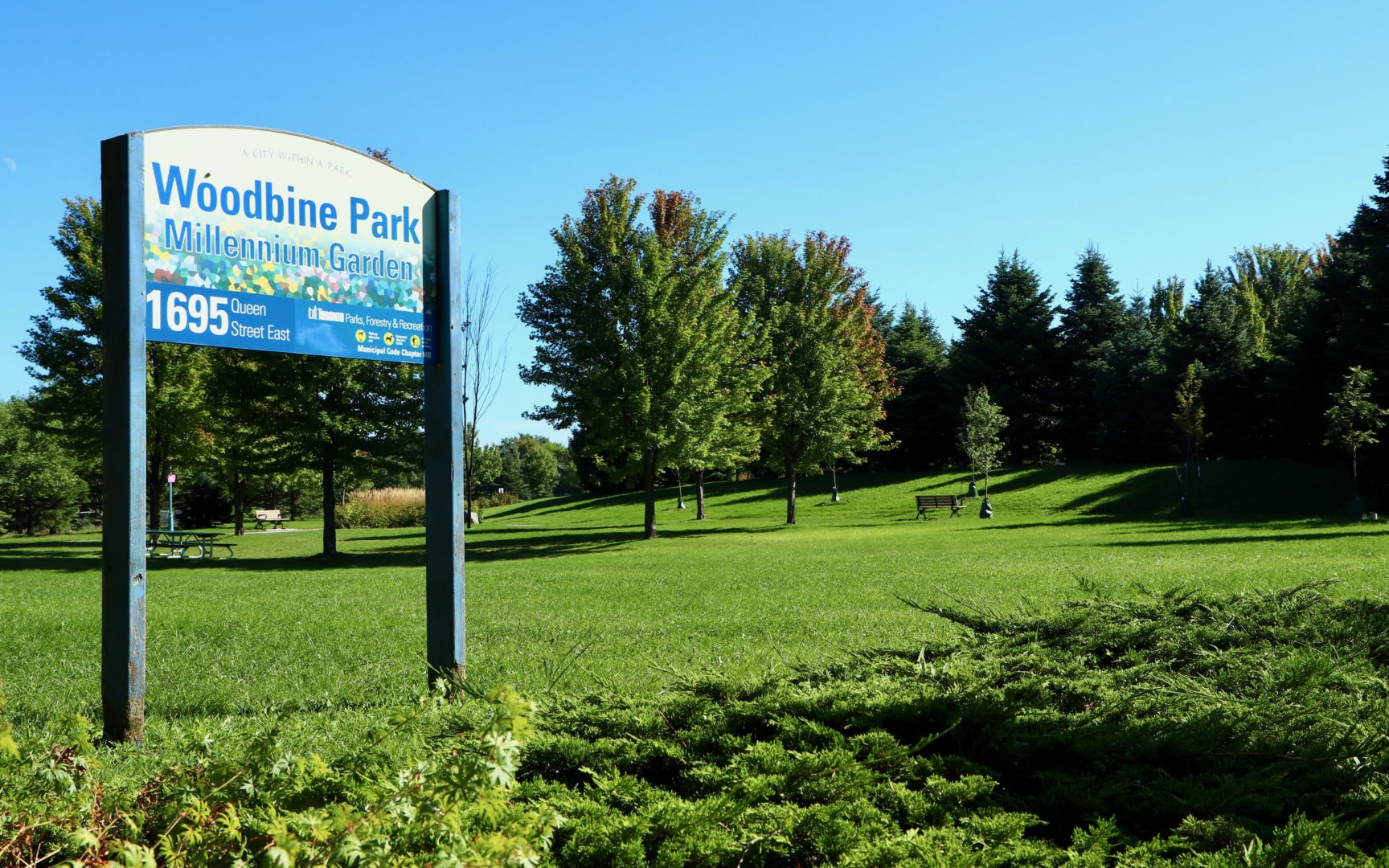 Woodbine Park, Photo by Unknown